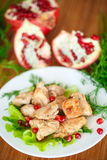 Roasted chicken with pomegranate seeds Stock Images