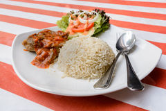 Roasted chicken with rice Stock Photography