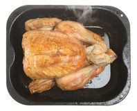 Roasted Chicken in Roasting Tin. Freshly roasted chicken in enamelled roasting tray with steam rising Royalty Free Stock Photography