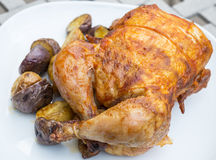 Roasted Chicken #2 Royalty Free Stock Photos