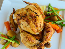 Roasted chicken with salad royalty free stock images