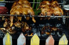 Roasted chicken sell at street market. royalty free stock image