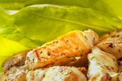 Roasted chicken slice. Roasted chicken pieces extreme close-up macro shot Royalty Free Stock Photos