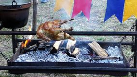 Roasted chicken on a spit stock video