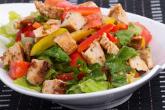 Roasted chicken summer salad Stock Images