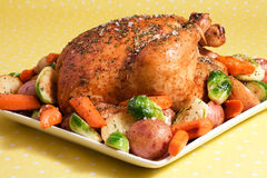 Roasted Chicken & Vegetables stock photography