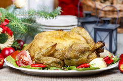Roasted chicken with vegetables Stock Photos