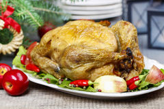 Roasted chicken with vegetables Royalty Free Stock Photos