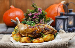 Roasted chicken with vegetables Stock Images