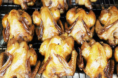 The roasted chickens Stock Image