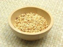 Roasted chopped hazelnuts Royalty Free Stock Image