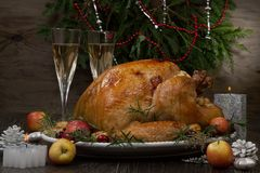 Roasted Christmas Turkey with Grab Apples royalty free stock images