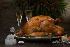 Roasted Christmas Turkey with Grab Apples stock images