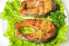 Roasted chum salmon fish Royalty Free Stock Image