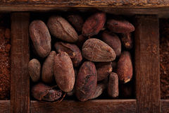 Roasted cocoa chocolate beans in old wooden spicy box Stock Photo