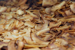 Roasted coconut shavings Stock Photos
