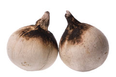Roasted coconuts  Royalty Free Stock Photography