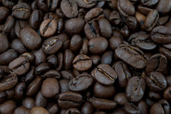 Roasted Coffe Royalty Free Stock Photography