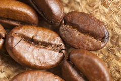 Roasted coffe beans macro Stock Images