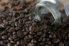 Roasted coffee. Aroma cappuccino mocca Stock Images