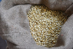 Roasted coffee bean in in bag Royalty Free Stock Image