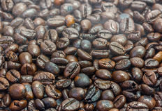 Roasted coffee bean Stock Image