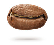 Roasted coffee bean isolated on white background. File contains a path to isolation. royalty free stock image