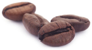 Roasted coffee bean Stock Images