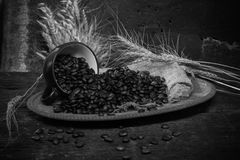 Roasted coffee bean purifying from coffee cup. In still life style royalty free stock images
