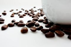 Roasted coffee bean spread on white back ground. Roasted coffee bean spread on white back ground near a white cup. Selected focus Royalty Free Stock Photography