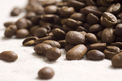 Roasted coffee beans. On jute sacking Royalty Free Stock Photography