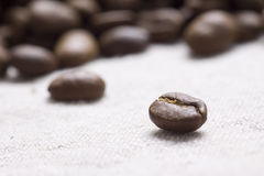 Roasted coffee beans. On jute sacking Stock Image