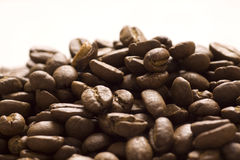 Roasted coffee beans. On jute sacking Royalty Free Stock Photo