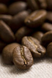 Roasted coffee beans. On jute sacking Stock Photography