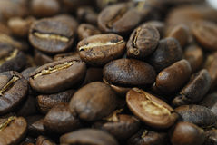 Roasted coffee beans. Freshly Roasted coffee Arabica beans Stock Photography