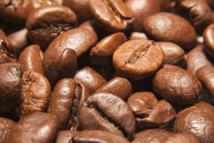 Roasted coffee beans. Macro photo Stock Image
