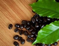 Roasted coffee beans . Royalty Free Stock Images