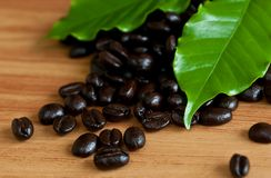 Roasted coffee beans . Stock Photos