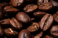 Roasted Coffee Beans. Close-up of brown, roasted coffee beans Royalty Free Stock Photography