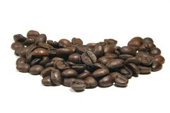 Roasted Coffee Beans. Brown Roasted Coffee Beans royalty free stock photography