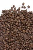 Roasted Coffee Beans. Freshly roasted Guatemalan Coffee beans Royalty Free Stock Photos
