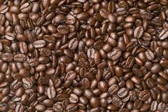 Roasted Coffee Beans. Background material of dark roasted whole coffee beans royalty free stock photos