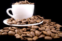 Roasted coffee beans. In the white cup Stock Photo