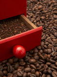 Roasted coffee beans. Whole and ground in a grinder royalty free stock photo