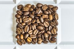 Roasted coffee beans arabica. Laid out square in a white tray Royalty Free Stock Images