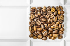 Roasted coffee beans arabica laid out square in a white tray. Grocery background with copyspace Stock Images