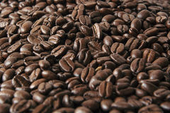 Roasted coffee beans as background. Roasted brown beans breakfast bar royalty free stock images