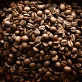 Roasted coffee beans backgound, copy space, top view. Cappuccino, dark espresso, aroma black caffeine drink, ingredient. For coffee beverage. Square crop Royalty Free Stock Image