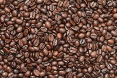 Roasted coffee beans background Stock Images