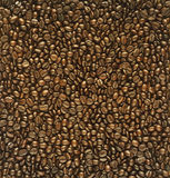 Roasted coffee beans for background, bright color brown Royalty Free Stock Photos